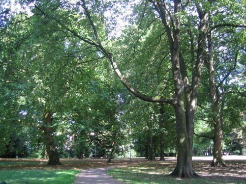 Koelner Stadtpark